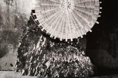 dsc_1957