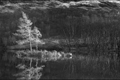 2017-02-scotland-07-006-web